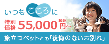 いつもこころに~小さなお葬式のペット葬儀~WEB特別価格50,000円(税抜)旅立つペットとの「後悔のないお別れ」