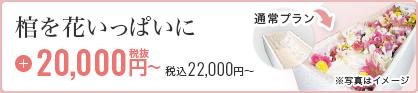 棺を花いっぱいに 20,000円税抜~ 税込22,000円~