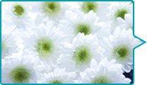 葬場祭(告別式)のイメージ