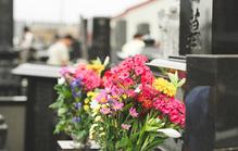 お墓にお供えする花の選び方とは?種類や注意点を知っておこう!