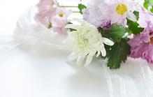 四十九日法要でお供えする花について知っておきたい基礎知識